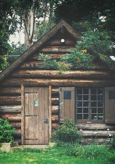 Rustic log cabin.