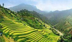 Resultado de imagen de vietnam