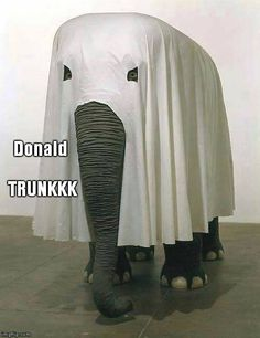 Donald TrunKKK  Criminalize Conservatism