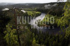 Bosques de la localidad de Kuusamo en Finlandia, de donde procede la madera con la que Kuusamo Houses España construye sus casas