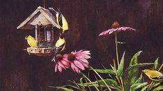 """""""Goldfinch and Coneflower"""" - Signed & Numbered Limited Edition, $100 Off!  """"Years ago, I started feeding goldfinch in this feeder I made from a mayonnaise jar. The feeder was not too effective because goldfinch seem to enjoy pecking their thistle seed from small holes. Nevertheless, I was impressed by their ability to assume odd positions- much like the acrobatic feats of a chickadee. The coneflowers were from my garden."""""""