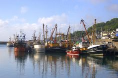 Travel: Newlyn Fish Market