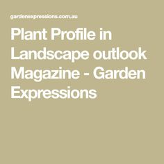 Plant Profile in Landscape outlook Magazine - Garden Expressions