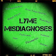Misdiagnosis Poll | What is Lyme Disease?
