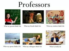 What people think Professors do.
