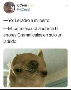 Tu Secreto Fails 2 - Exorcismo Real No Fake Best Memes, Dankest Memes, I Love School, Pinterest Memes, Cute Anime Chibi, True Quotes, Funny Images, Youtubers, Funny Animals