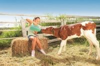 Head to Bestbrook Mountain Resort to experience life on the farm. Learn how to milk the cows, feed the baby animals and collect fresh eggs. Milk The Cow, Experience Life, Mountain Resort, Cool Countries, Horse Riding, Farm Life, Cows, Cuddling, Baby Animals