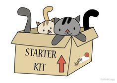 Crazy Cat Lady Starter Kit by KathrinLegg