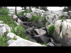 Falls Below Reservoir Lake in Medicine Bow near #Laramie #Wyoming  Video of a beautiful #waterfall in Medicine Bow National Forest # Wyoming via @AlsTrails http://www.justtrails.com/interesting-places/interesting-places-falls-below-reservoir-lake/ …