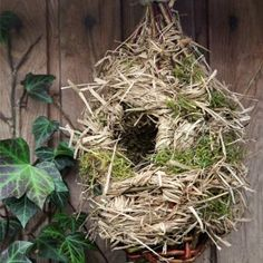 Make yourself this birdhouse. With some strands of wicker and straw, nothing more solid! Spirit Of Here, Garden Of Here Deco Nature, Bird Boxes, Land Art, Permaculture, Bird Feeders, Vegetable Garden, Backyard, Birds, Natural
