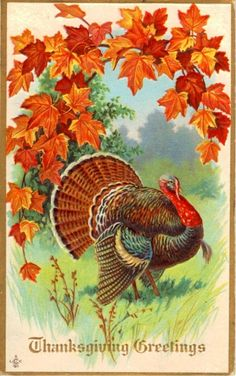 Antique or very vintage Thanksgiving postcard with a turkey and autumn leaves. Thanksgiving Greeting Cards, Thanksgiving Pictures, Thanksgiving Blessings, Vintage Thanksgiving, Vintage Fall, Thanksgiving Crafts, Vintage Holiday, Thanksgiving Decorations, Vintage Halloween