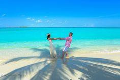 boda playa palmera