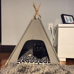 cat tepee. my cat has one and has recently discovered the joys of curling up in it.