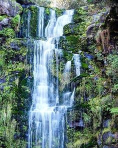 Embrace the detours! Great little find off the Great Ocean Road from @worldthroughourlens  #erskinefalls #waterfall #victoria #vic #australia #travscav #findadventure by travelscavenger http://ift.tt/1IIGiLS