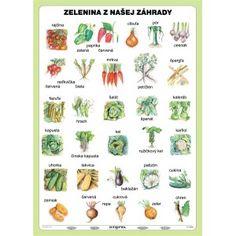 Zelenina z našej záhrady