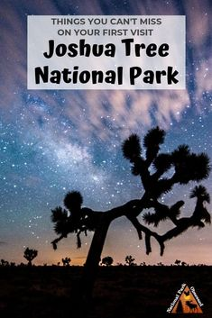Looking to discover the unique beauty of Joshua Tree? Find out the top 10 things you shouldn't miss on your first visit to Joshua Tree National Park. National Parks Usa, Joshua Tree National Park, Usa Travel Guide, Travel Usa, Travel Tips, Joshua Tree Hikes, Joshua Tree Camping, Park Photography, Landscape Photography