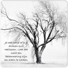 Je weet nooit of jij je dromen zult realiseren. Laat dat nooit een belemmering zijn om eraan te werken. #dromen #dreaming #living #life