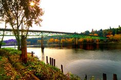 Sellwood Bridge in the Fall with Trees on West Side of Willamette, view to southwest.