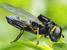 Cubiertas con un gel especial pueden atrapar el polen, pero todavía no vuelan autónomamente.