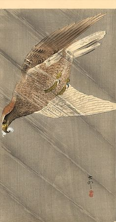 Eagle in descent, 1905 Ohara Koson