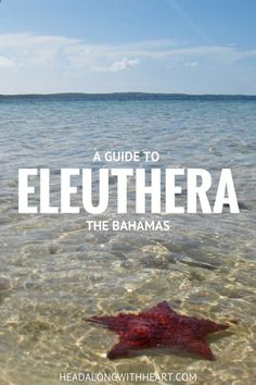 A guide to your perfect vacation to the island of Eleuthera, the Bahamas