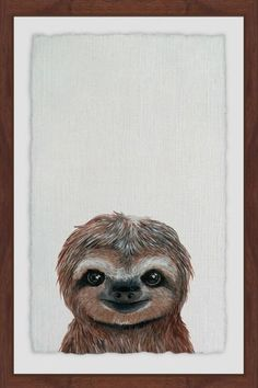 Cheerful Sloth