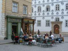 Sarukoen 猿公園: Vienna Cafe Society