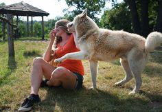 El perro es una especie totalmente social, coopera contigo, te analiza, ocupa tu conducta como referente, revela experto. Foto: Shutterstock.