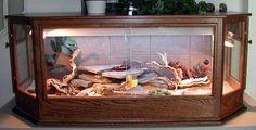 Sandras Uromastyx Page Benny the Bearded Dragon Bearded Dragon Funny, Bearded Dragon Habitat, Bearded Dragon Cage, Reptile Habitat, Reptile Cage, Reptile Tanks, Bartagamen Terrarium, Terrarium Ideas, Worms