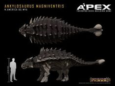 Ankylosaurus Magniventris by Herschel-Hoffmeyer