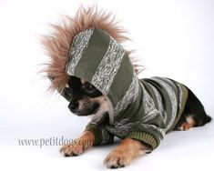 Dog clothes SMALL Green and grey stripes cute Mohawk hoodie