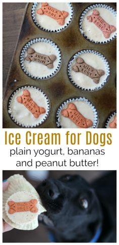 Ice cream for dogs! Bananas, peanut butter, and plain yogurt combine to create t… Ice cream for dogs! Bananas, peanut butter, and plain yogurt combine to create these delicious treats for any puppy friend! A tasty way to cool down on a hot day. Dog Biscuit Recipes, Dog Treat Recipes, Dog Food Recipes, Easy Recipes, Doggy Treats Recipe, Recipes Dinner, Banana Dog Treat Recipe, Family Recipes, Food Tips