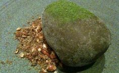 the rock (at atera, ateranyc.com)