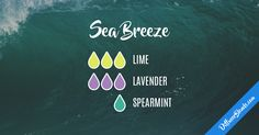 Blend Recipe: 3 drops Lime, 3 drops Lavender, 1 drop Spearmint