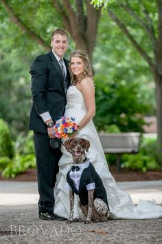 Wedding photo with their DOG in a TUX :)  I absolutely LOVE it!