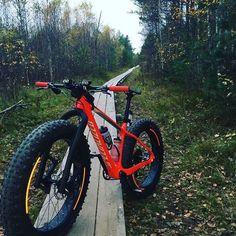 E Mountain Bike, Downhill Bike, Push Bikes, Road Bike Women, Fat Bike, Bike Style, Bicycle Design, Motorcycle Bike, Road Bikes