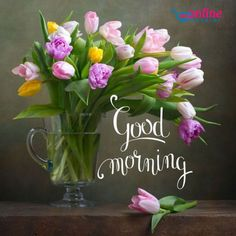 good morning - good morning quotes - good morning - good morning quotes for him - good morning quotes inspirational - good morning wishes - good morning beautiful - good morning quotes funny - good morning greetings Good Morning Friends Images, Good Morning Images Flowers, Good Morning Beautiful Images, Morning Pictures, Morning Pics, Good Morning Greeting Cards, Good Morning Greetings, Good Morning Messages, Morning Quotes