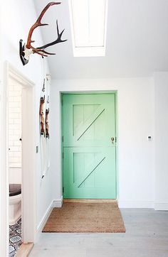 Mint Dutch door