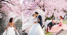 25 Stunning Cherry Blossom Wedding Photos You Will Love! Cherry Blossom Wedding, Cherry Blossom Tree, Blossom Trees, Blossoms, Field Wedding, Wedding Shoot, Wedding Dresses, Engagement Photography, Wedding Photography