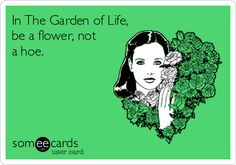 In The Garden of Life, be a flower, not a hoe.