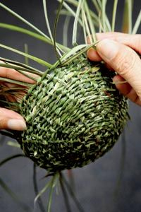 Foto: Lucia Rossi - Basket and Crate Weaving Projects, Weaving Art, Willow Weaving, Basket Weaving, Creative Crafts, Diy And Crafts, May Day Baskets, Pine Needle Baskets, Woven Baskets