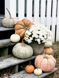 fall decor ideas Pumpkins on the Front Porch Steps for Fall Pumpkins on the Front Porch Steps Front Porch Steps, Farmhouse Front Porches, Small Front Porches, Front Porch Design, Front Porch Fall Decor, Fall Porches, Fall Porch Decorations, Halloween Decorations, Fall Yard Decor