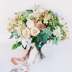 Роза, озотамус, орнитогалум, экзотика