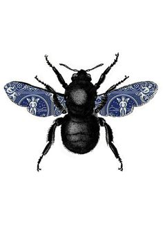 Bug with fancy wings.   Kids could decorate sets of wings to add to hi-fi bug prints, we work with them to assemble it as a collage. Might also give them cut outs of leaf shapes to decorate as well. Could frame or add to canvas and cover with poly and or shellac
