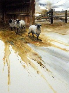 Mike Capser Country White Sheep Print 16 x 23