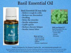 Basil Essential Oil Member Number: 2542293 https://www.youngliving.com/signup/?sponsorid=2542293&enrollerid=2542293