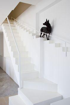 A escada (e a casa!) é dos cachorros (Foto: Hiroyuki Oki/Decon Photo Studio)