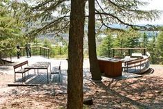 Picnic deck in Himalayan Cedar Forest - National Arboretum Canberra