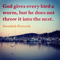 God gives every bird a worm, but he does not throw it into the nest.   ~ Swedish Proverb