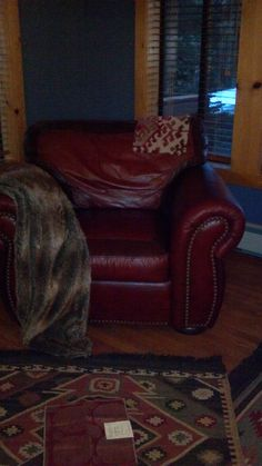 The leather chair in the living room corner with a possible pillow fabric set on top.